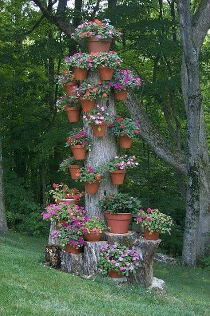 园艺设计1