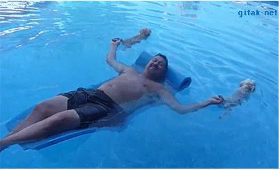 人 狗 游泳 一举二得的娱乐