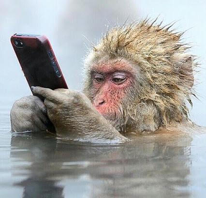 哇猴哥哥 你是打电话给我吗?