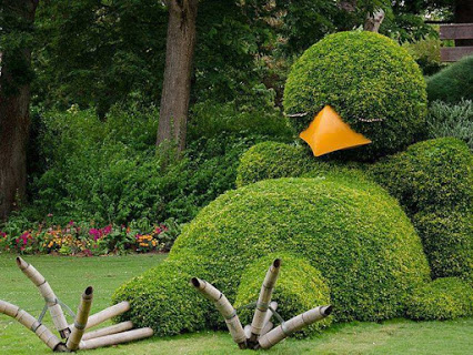 Sleeping Bird Topiary.睡鸟树木造型