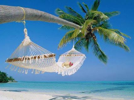 真舒服的沙滩摇篮