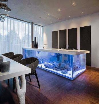 A Giant Aquarium.