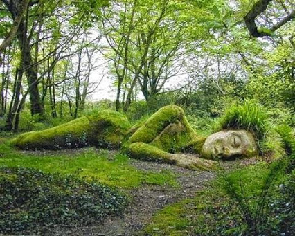 Beautiful Garden Creativity!美丽的花园,惊人的创造力!