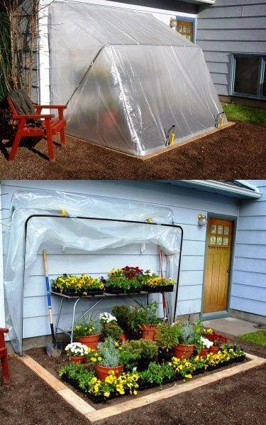 Build a Fold-Down Greenhouse.建立一个折叠温室。