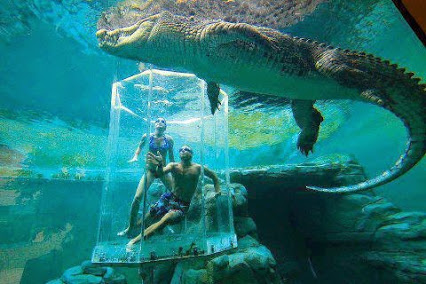 Cage of death at Crocosaurus in the middle of Darwin,Australia澳大利亚的创意水族管