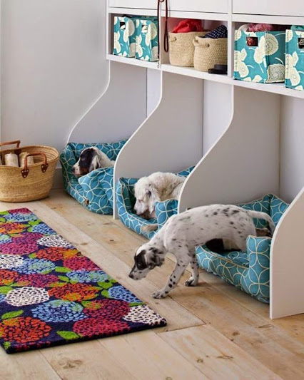 Dogs Bedroom Idea.狗狗的卧室。