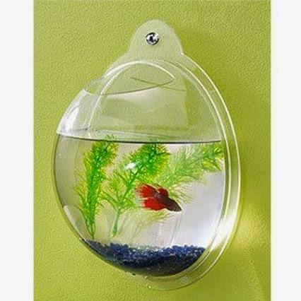 Fish Bubble Aquarium.泡泡鱼水族馆。