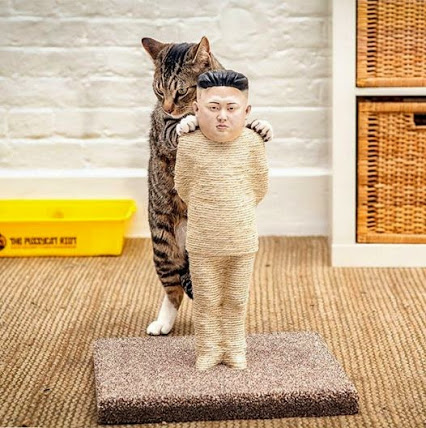 Kim Jong Un scratching post....猫和金正恩,呵呵。。。