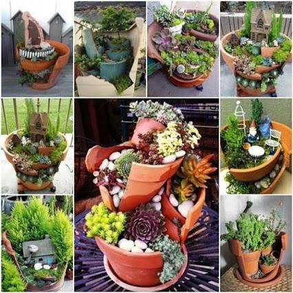 Miniature Garden.微型花园。